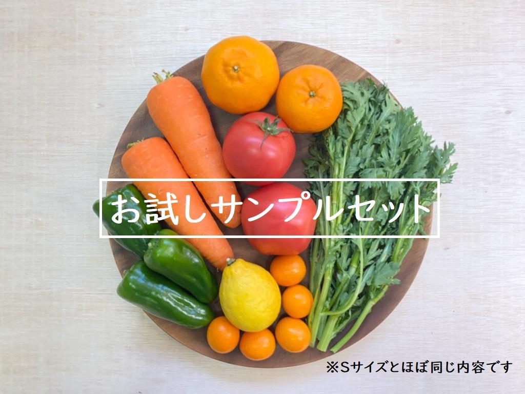お試し!ベジかける野菜セット