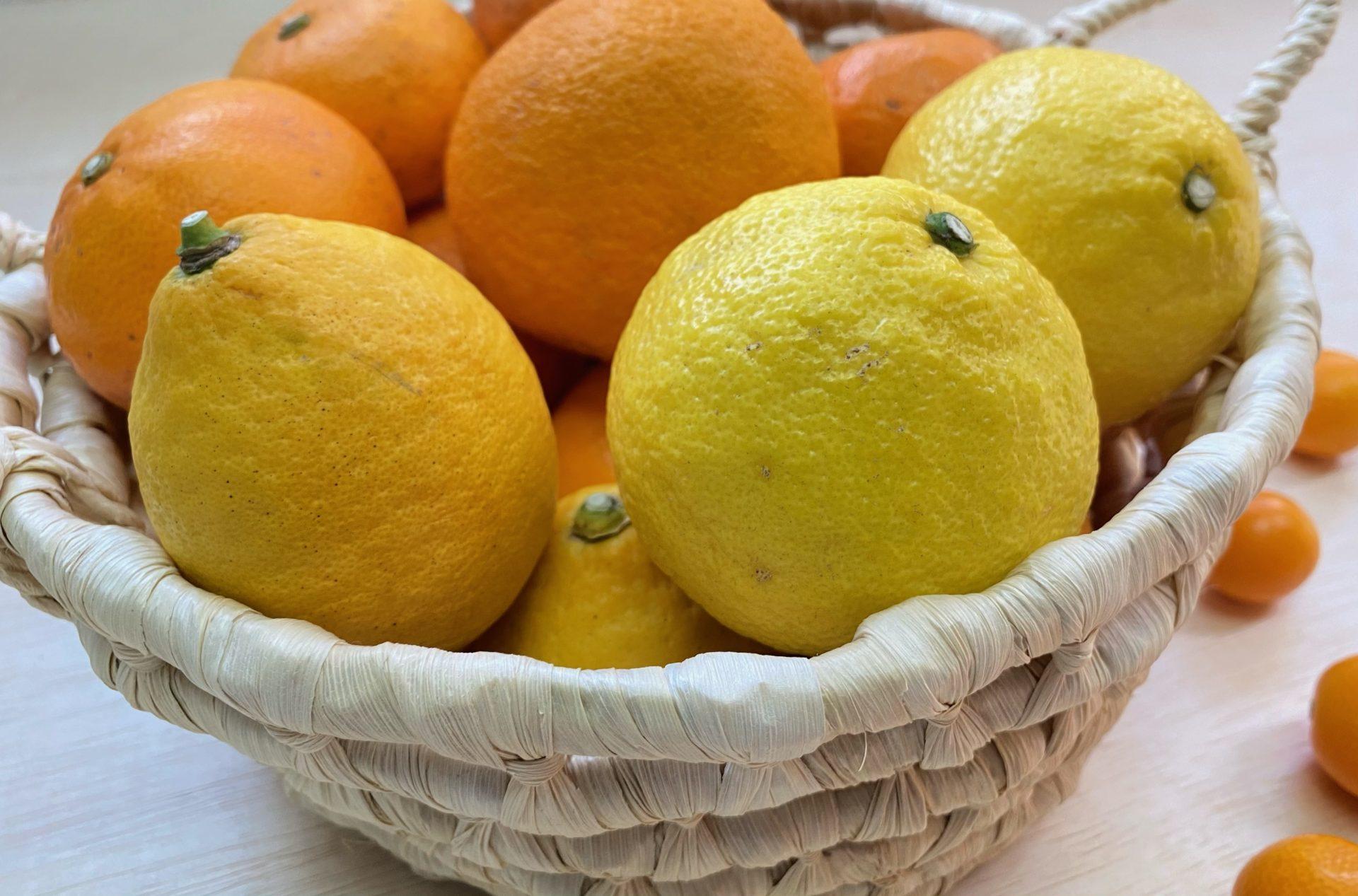 ベジかけるセレクト!春の柑橘セット